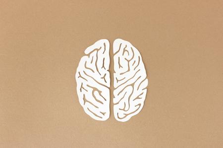 brain illustration: Brain paper-cut illustration