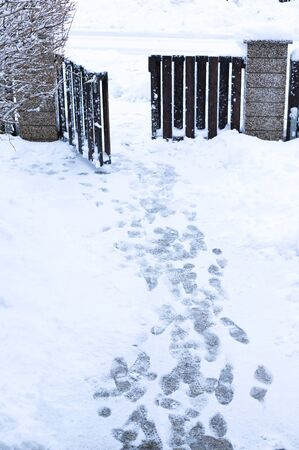 Footprints on a snowy path. Foot prints in the snow-covered path in the yard, vertical.
