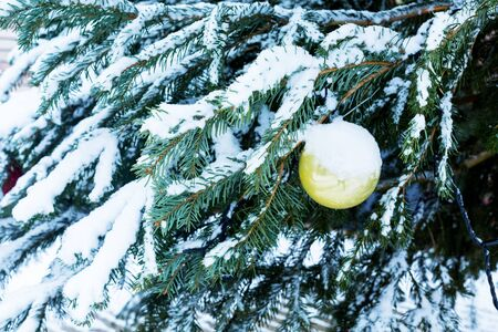 Yellow Christmas ball on a snowy Christmas tree outdoors in winter. Beautiful delicate background for New Years images.