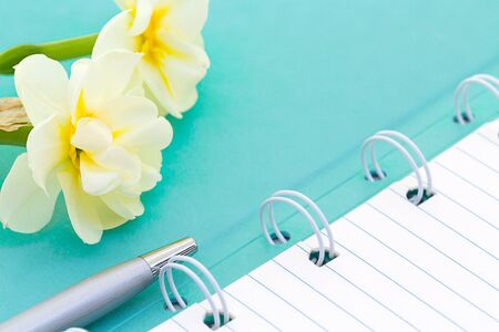 Top view photo of mint notebook and ball-point pen with daffodils, copy space. Minimalist flat lay image of mint diary and pen as gentle girl office background