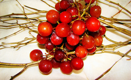 healers: Grapes over twigs