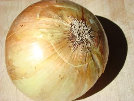 healers: Onion