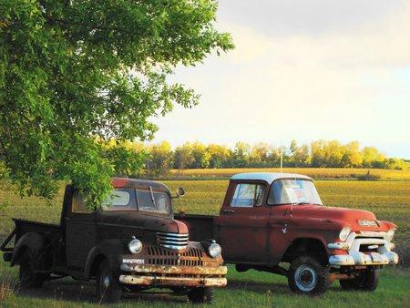 Two trucks Banco de Imagens - 1685636
