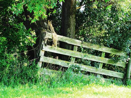 fencepost: Old fence