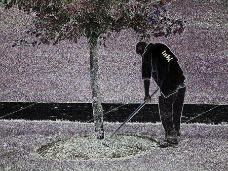 paysagiste: Landscaper