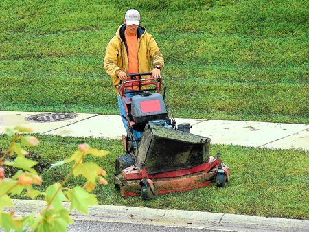 mowing the grass: Landscaper