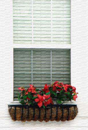 Canvas illustration of window flower box with poinsettias 版權商用圖片
