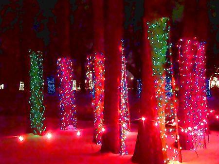 Cartoon illustration of Christmas lights around the trunk of the tree