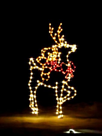 Cartoon illustration of a reindeer done in Christmas lights