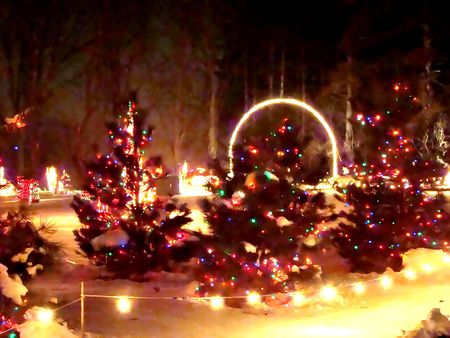 Watercolor painting Christmas trees and lights photo