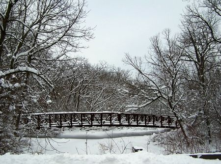 frozen river: Free stock photo of a bridge over a frozen river in the forest preserve, winter landscape