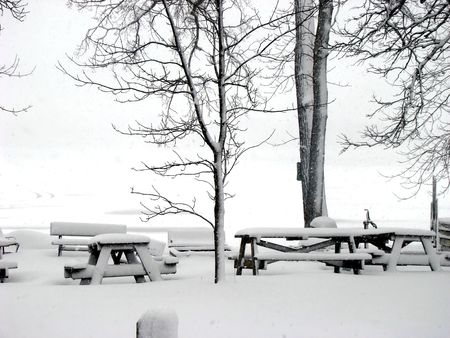 Royalty free photo of winter scenery, snowy trees and picnic tables in the park Stock Photo - 3816324