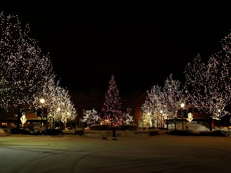 Photo of light trees with christmas lights in the park around a large christmas tree, photo taken at night