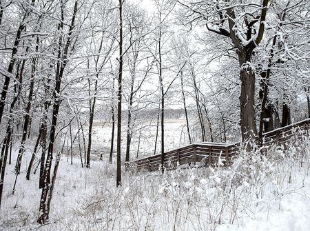 Photo, landscape of a wooden structure in the woods, everything covered in snow