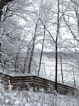 Photo of a wooden banister and stairs in the forest, covered in snow