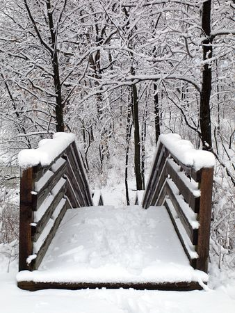 Photo of of wooden stairs in a forest preserve covered in snow
