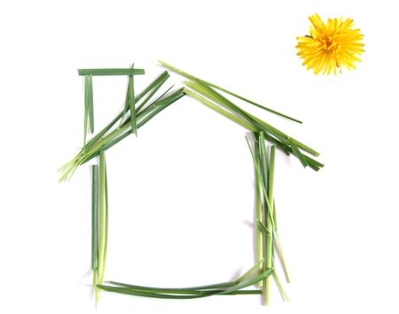 environmentally friendly: Enviromentally friendly house made up of grass an dandelion instead of sun over white background