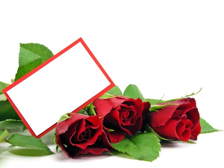 A selection of red roses and a blank gift card with copy space Stock Photo - 10900336