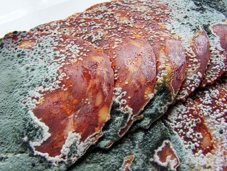 mouldy: A close up of some rotten salami meat with green mould