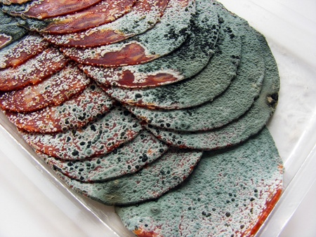 A close up of some rotten salami meat with green mould Stock Photo - 11049444
