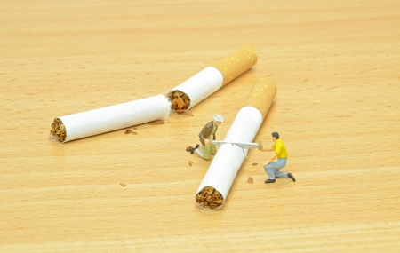 workmen: Stop smoking concept with workmen sawing cigarettes in half