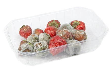uneatable: A packet of rotten mouldy strawberries on a table top