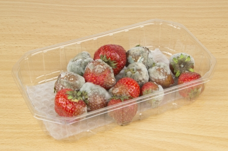 A packet of rotten mouldy strawberries on a table top photo