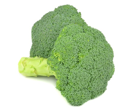 brocoli: Two pieces of fresh broccoli on a white background