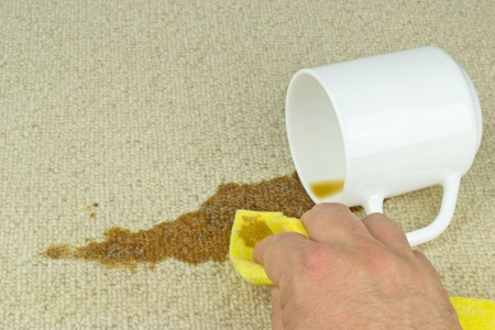 toppled: A hand with cloth cleaning a coffee stain from carpet