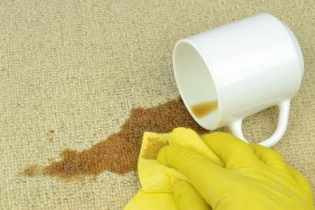 toppled: A hand in rubber glove cleaning a coffee stain on a carpet