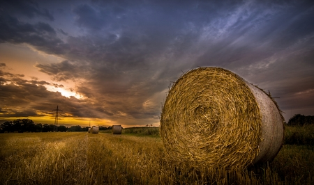 hdr: Bales of hay in the field during the morning sunrise Stock Photo