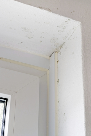 dampness: Early stage of rising damp mold on interior wall and window frame Stock Photo
