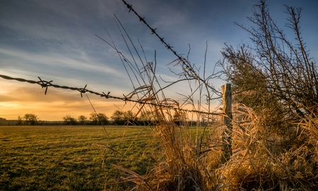 barb: A barbed wire fence with wooden post in the countryside