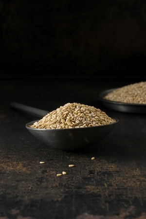 A low light image of a metal spoon and bowl of sesame seeds on a rustic background with copy space for your text Banco de Imagens