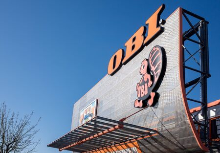 WALSRODE, NIEDERSACHSEN, GERMANY APRIL 1, 2019: OBI building supplies and DIY store sign at the shop front with copy space for your text. Editorial
