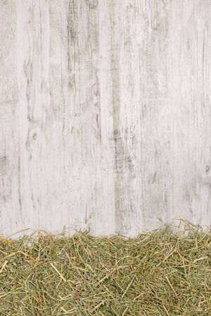 Dried straw grass on a rustic wooden background with copy space for your text or picture Banco de Imagens