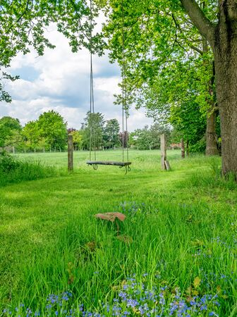 An old fashioned wooden tree swing in a sun lit countryside meadow