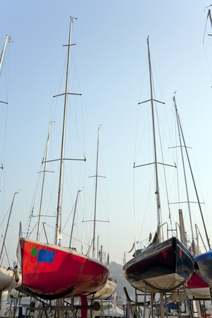 boats in the harbor photo