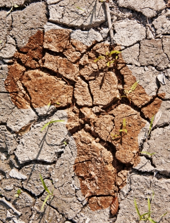 africa profile on dry earth photo