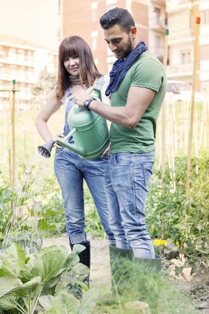 urban people: beautiful engaged couple watering plants in the garden