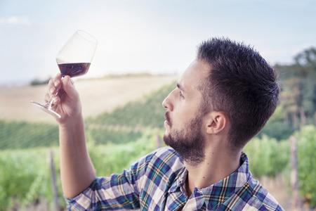 hombre con barba: hombre con barba y guapo mirando copa de vino antes de beber