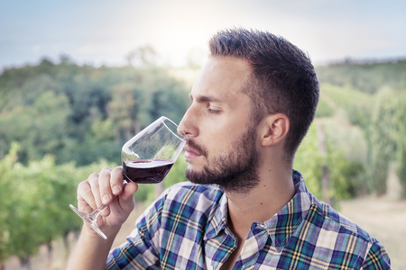 hombre con barba: hombre barbudo guapo huele copa de vino antes de beber