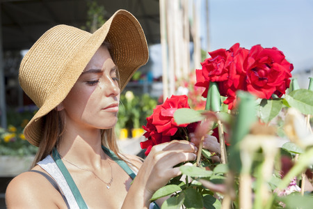 flower seller: young flower seller takes care of her red roses Stock Photo