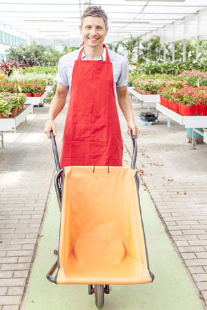 pushes: flower seller pushes a wheelbarrow in a greenhouse Stock Photo