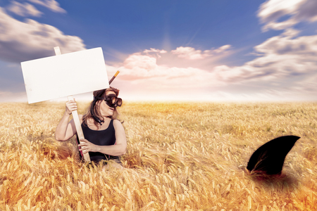 woman has a close encounter with a shark in a field of wheat surreal image Stock Photo