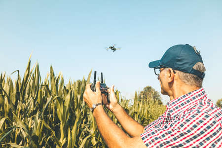 modern technological farmer analyzing the growth of corn by flying a drone over his cultivated fields. concept of sustainable exploitation of natural resources.