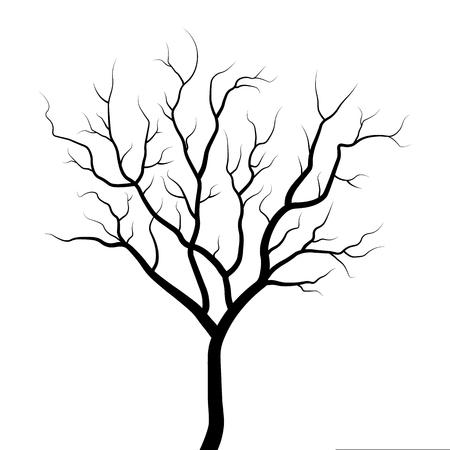 Illustrazione della siluetta dell'albero isolata su fondo bianco