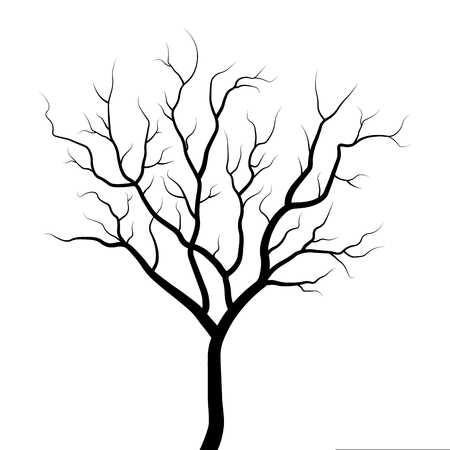 Tree silhouette illustration isolated on white background