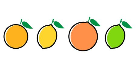 Citrus fruits icon set flat style. Vector