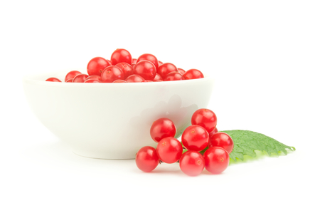 guelder rose berry: Viburnum with red berries isolated on a white background cutout Stock Photo